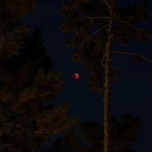 Red moon, Casertavecchia by Walter Marone